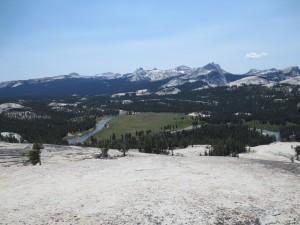 Debra Salonen Yosemite National Park
